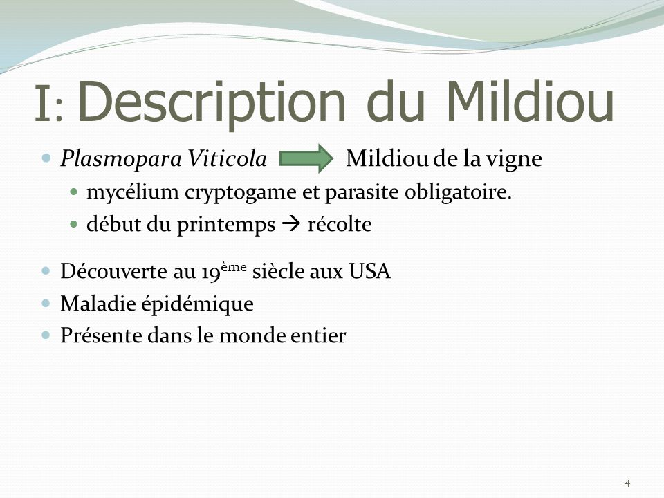 I: Description du Mildiou