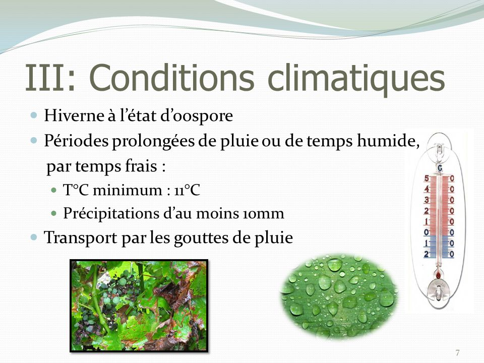 III: Conditions climatiques