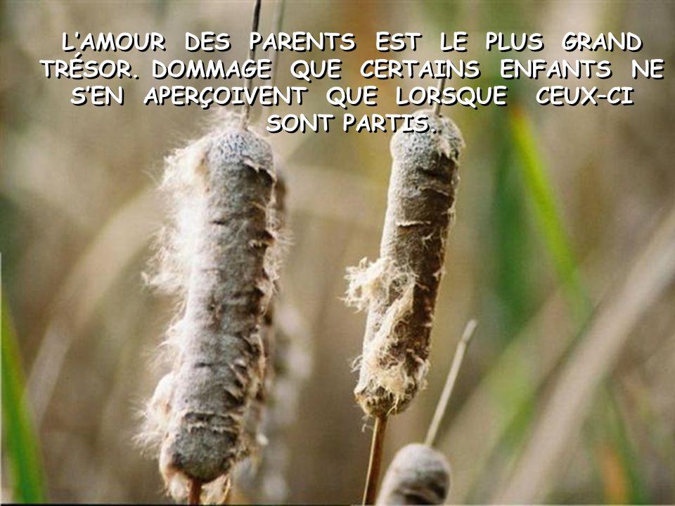L'AMOUR DES PARENTS EST LE PLUS GRAND TRÉSOR