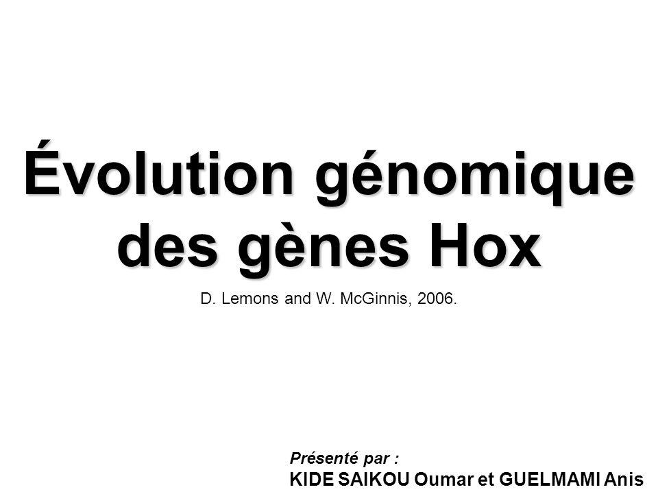 Évolution génomique des gènes Hox