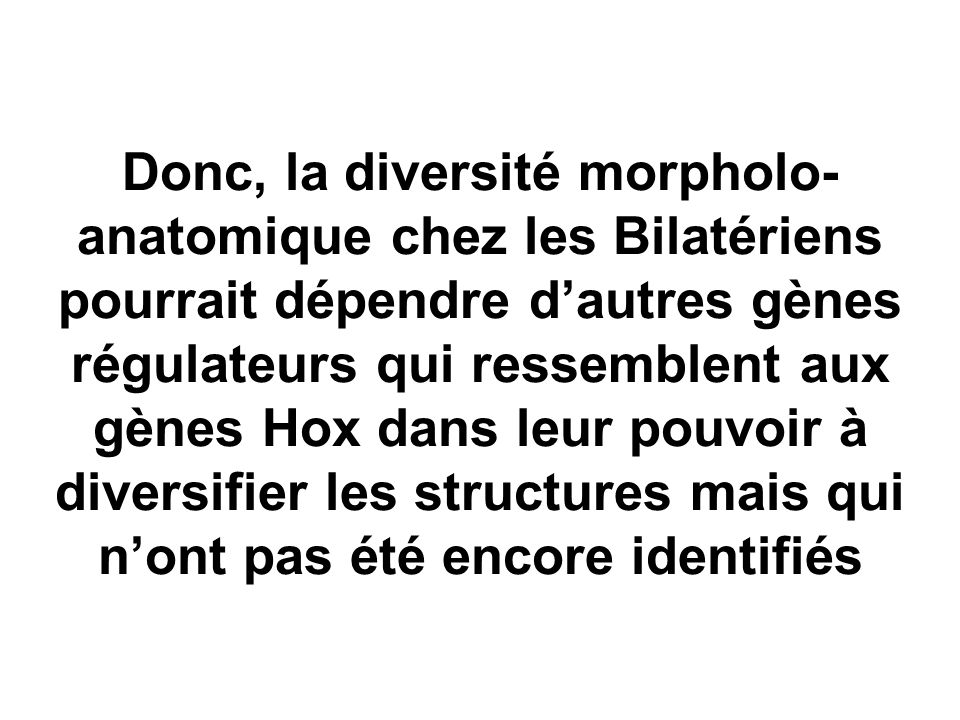 Donc, la diversité morpholo-anatomique chez les Bilatériens pourrait dépendre d'autres gènes régulateurs qui ressemblent aux gènes Hox dans leur pouvoir à diversifier les structures mais qui n'ont pas été encore identifiés