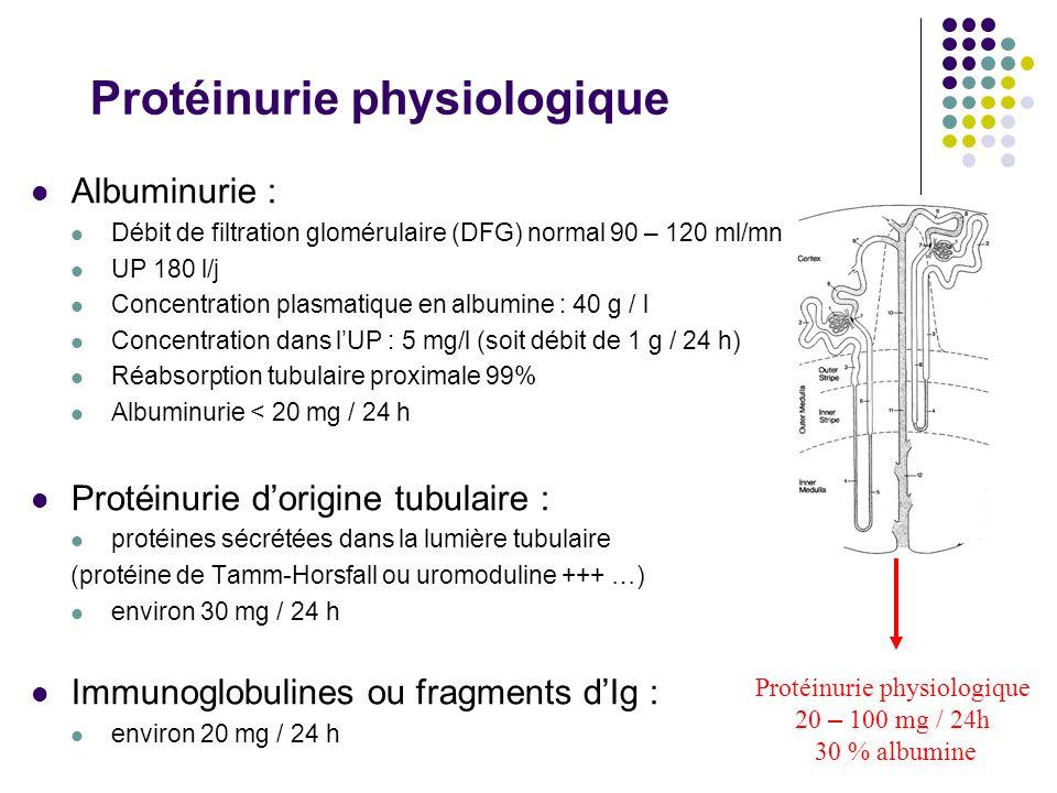 Protéinurie physiologique