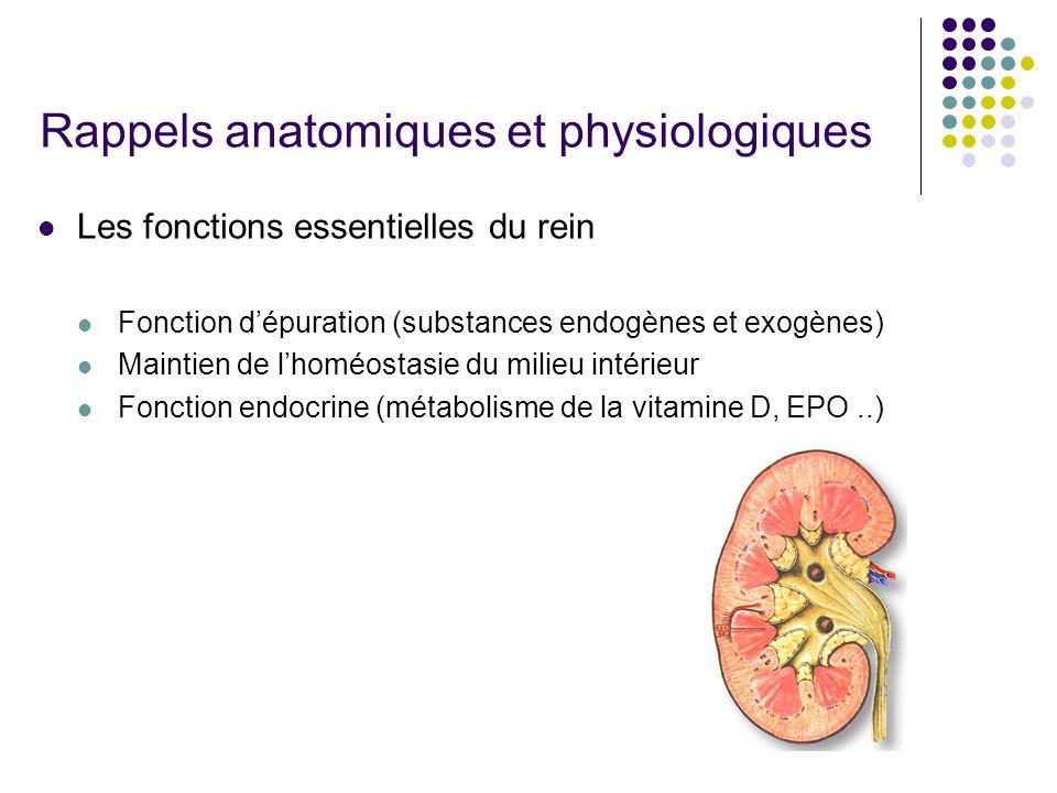 Rappels anatomiques et physiologiques