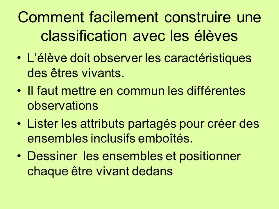 Comment facilement construire une classification avec les élèves