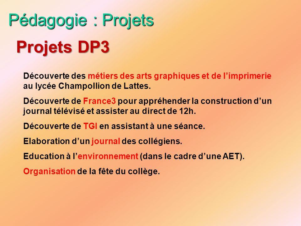 Pédagogie : Projets Projets DP3