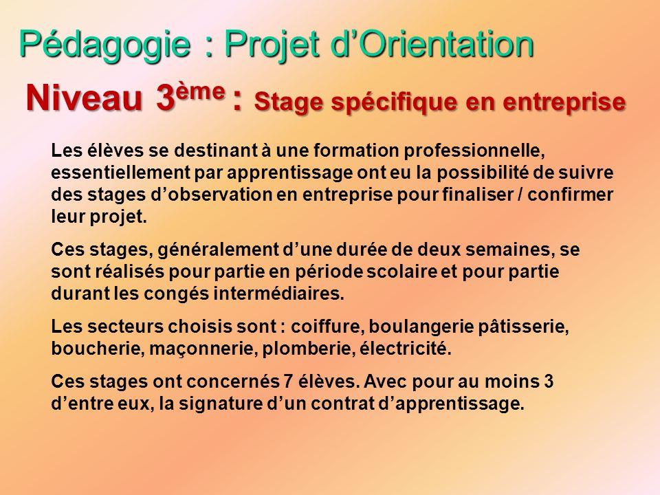 Pédagogie : Projet d'Orientation
