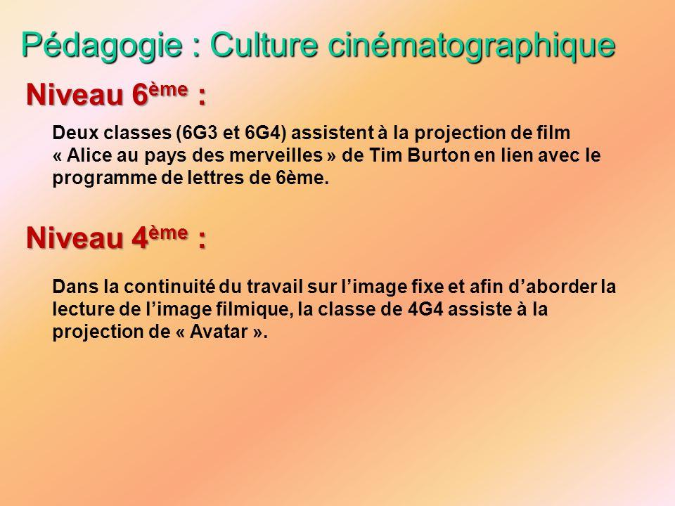 Pédagogie : Culture cinématographique