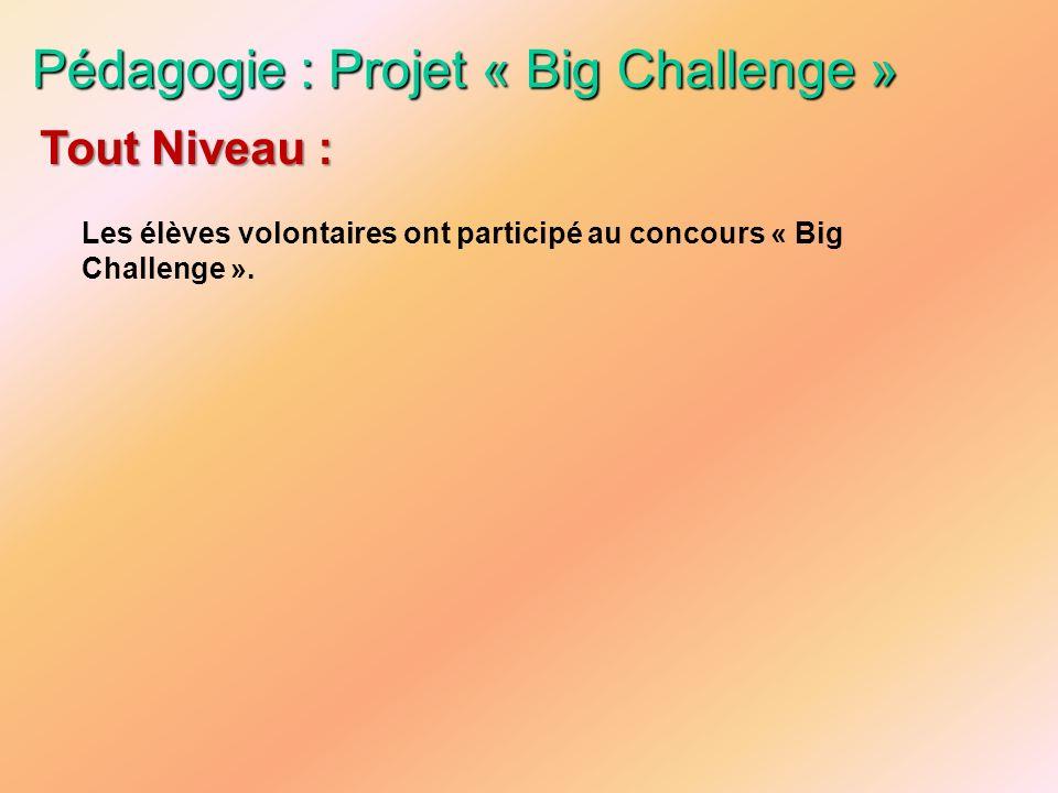 Pédagogie : Projet « Big Challenge »