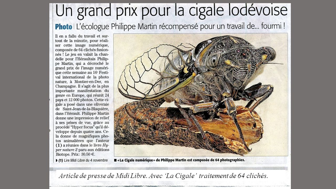 Article de presse de Midi Libre