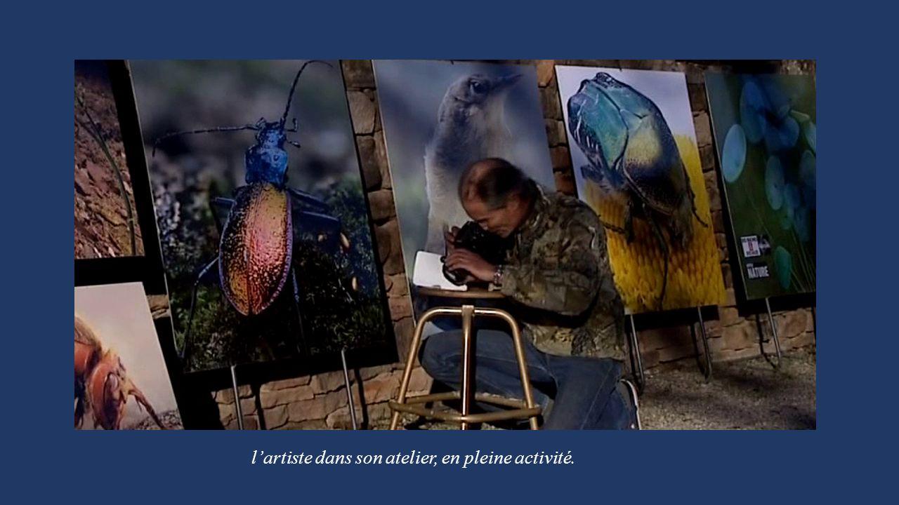 l'artiste dans son atelier, en pleine activité.