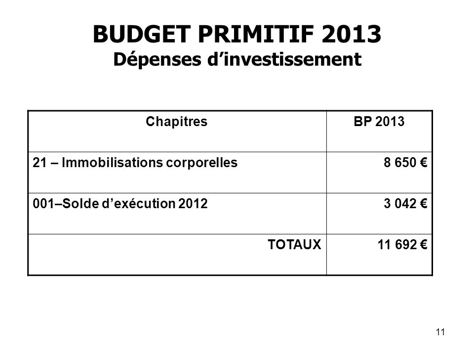 BUDGET PRIMITIF 2013 Dépenses d'investissement