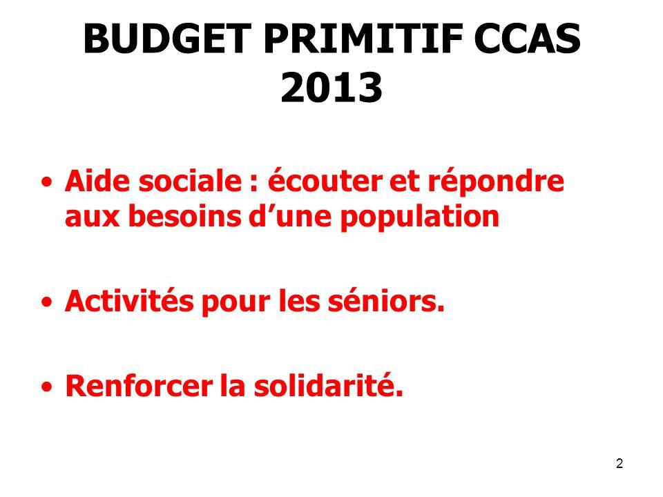 BUDGET PRIMITIF CCAS 2013 Aide sociale : écouter et répondre aux besoins d'une population. Activités pour les séniors.