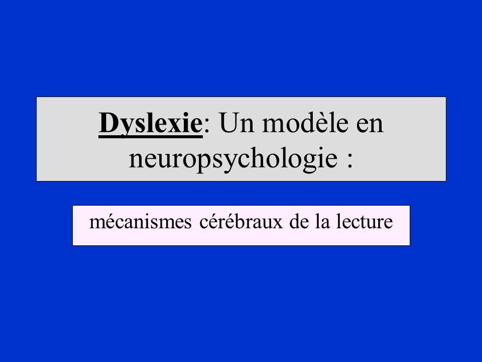 Dyslexie: Un modèle en neuropsychologie :