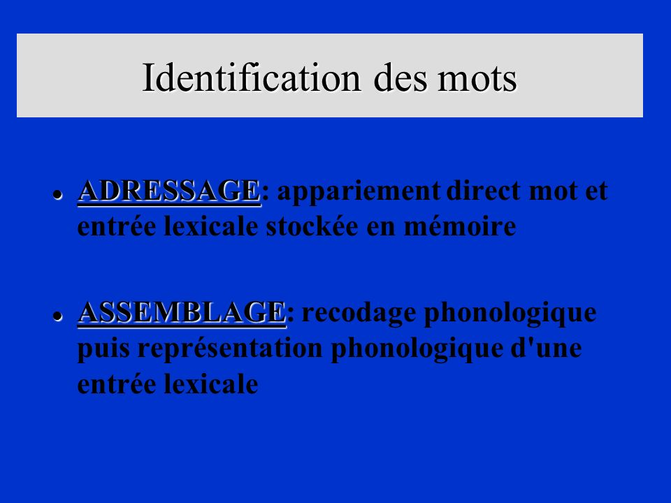 Identification des mots