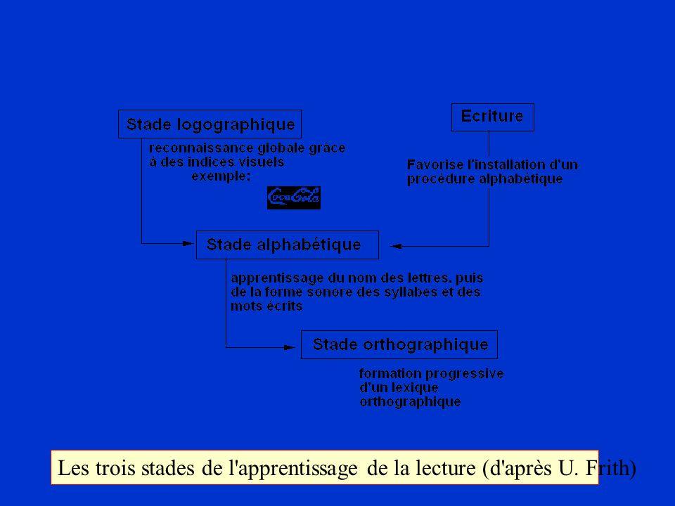 Les trois stades de l apprentissage de la lecture (d après U. Frith)