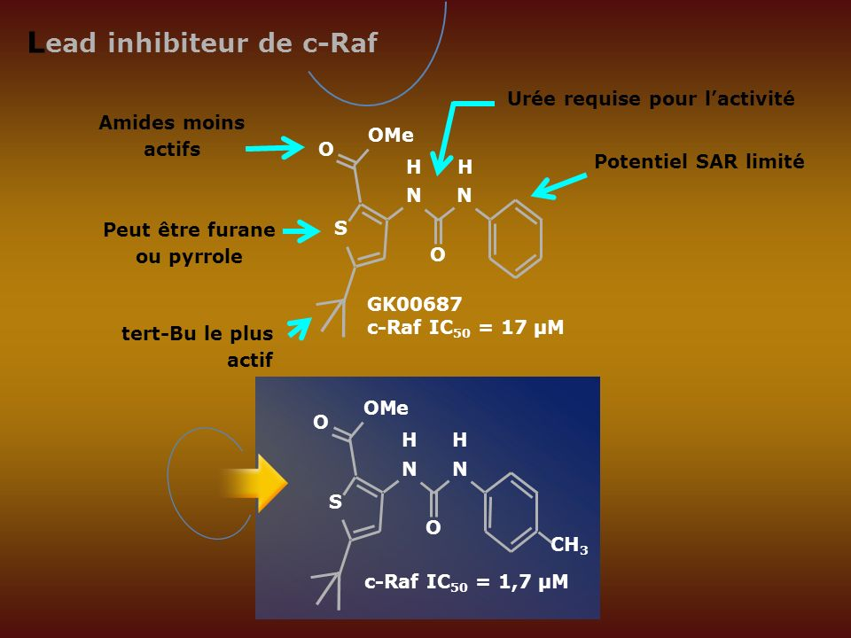 Lead inhibiteur de c-Raf