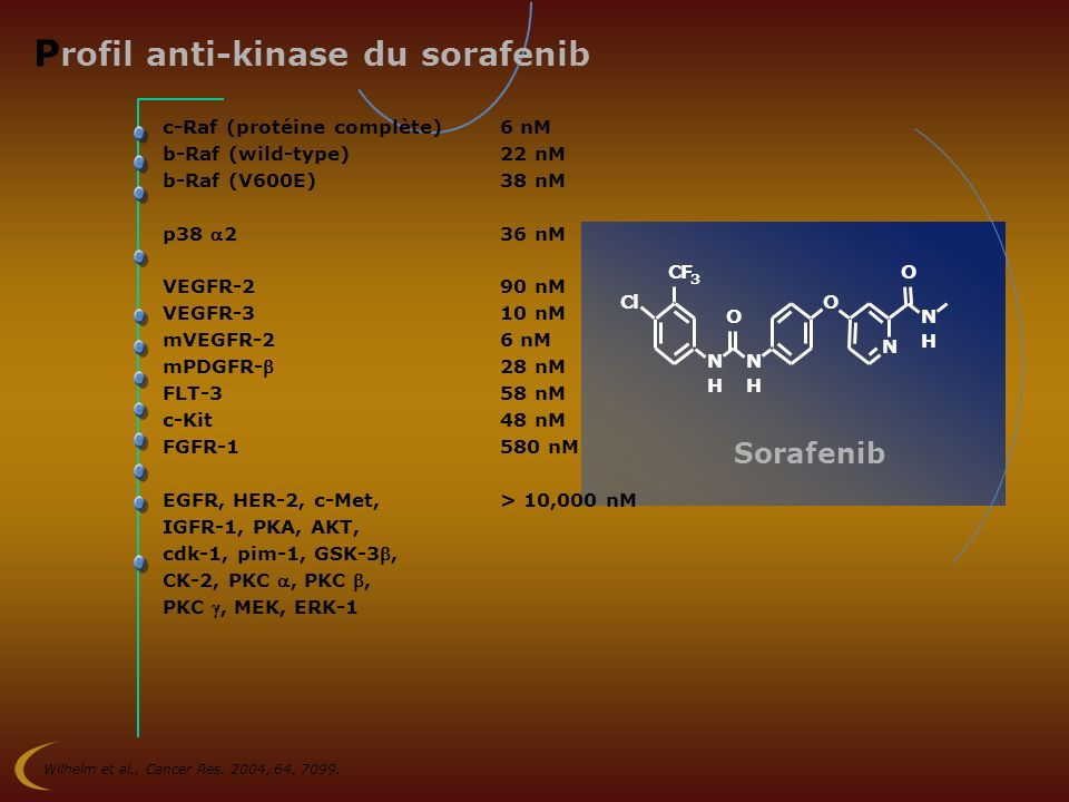 Profil anti-kinase du sorafenib