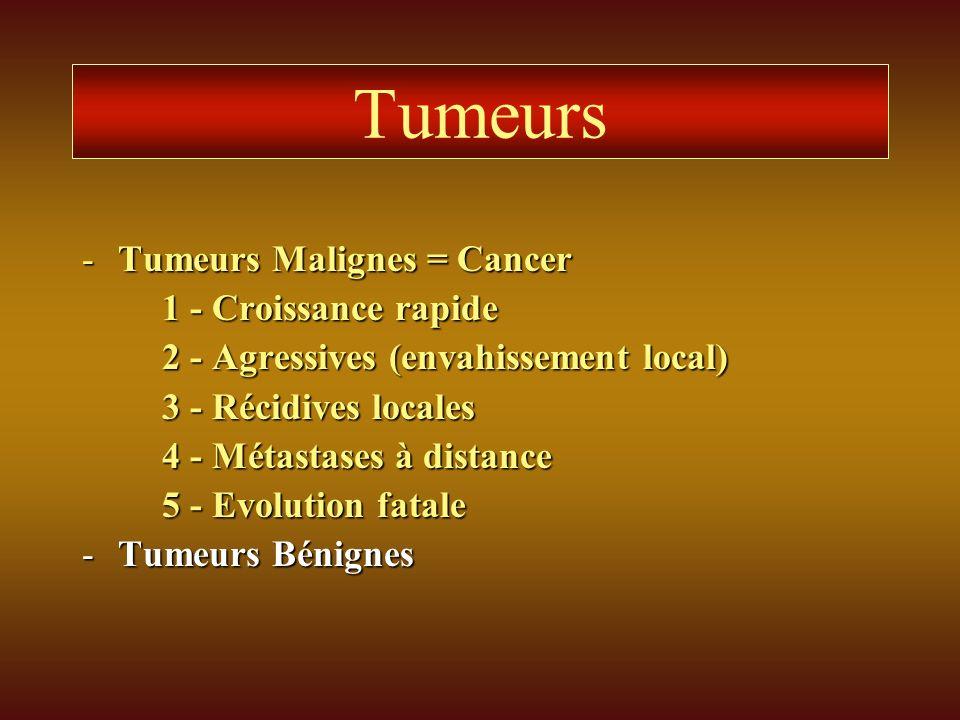 Tumeurs Tumeurs Malignes = Cancer 1 - Croissance rapide