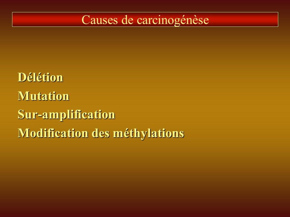 Causes de carcinogénèse