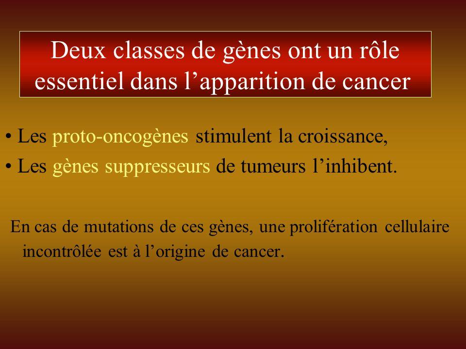 Deux classes de gènes ont un rôle essentiel dans l'apparition de cancer