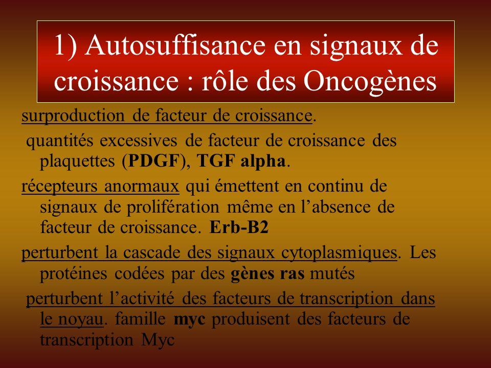 1) Autosuffisance en signaux de croissance : rôle des Oncogènes