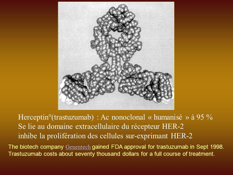 Herceptin°(trastuzumab) : Ac nonoclonal « humanisé » à 95 %