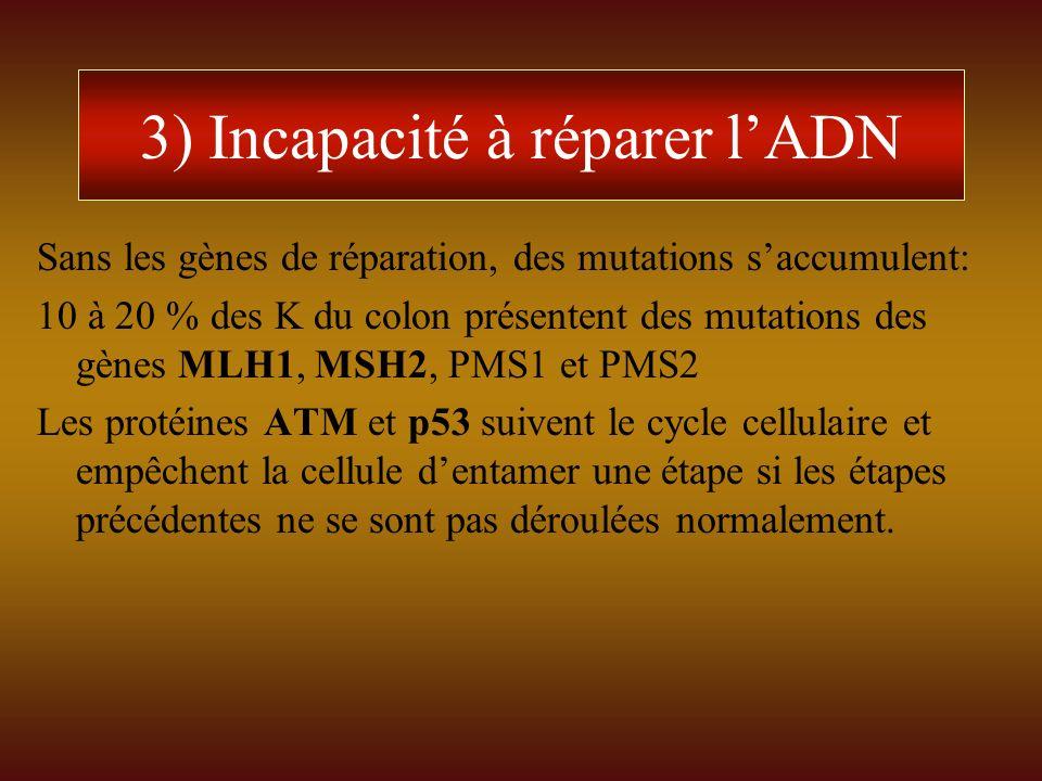 3) Incapacité à réparer l'ADN
