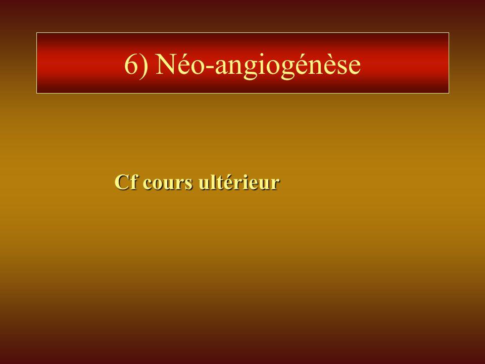 6) Néo-angiogénèse Cf cours ultérieur