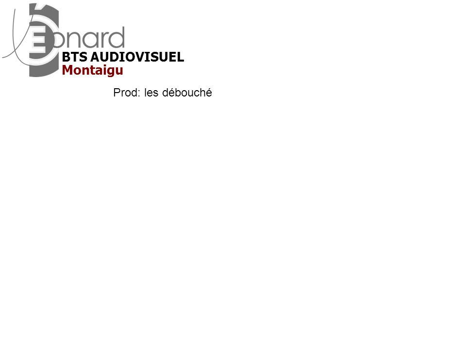 BTS AUDIOVISUEL Montaigu Prod: les débouché