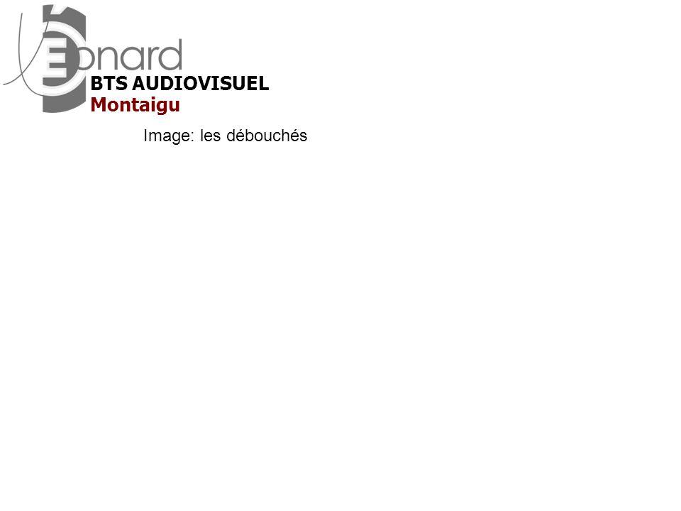 BTS AUDIOVISUEL Montaigu Image: les débouchés