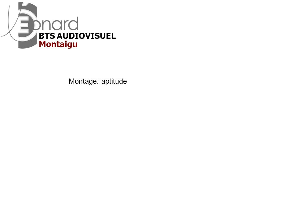 BTS AUDIOVISUEL Montaigu Montage: aptitude