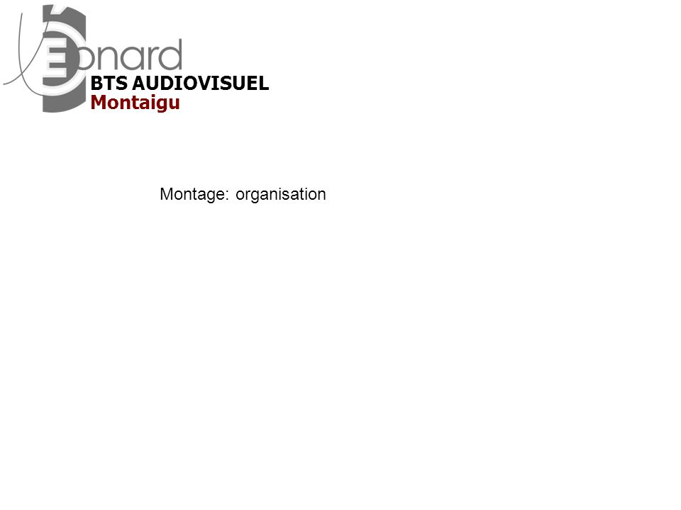 BTS AUDIOVISUEL Montaigu Montage: organisation