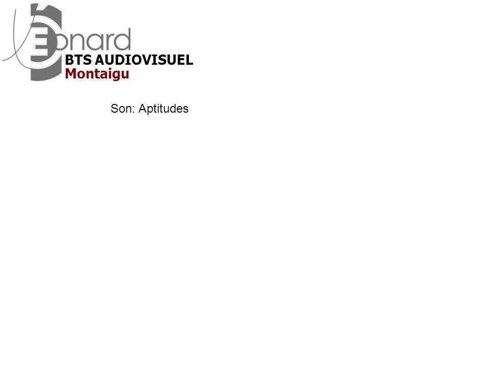 BTS AUDIOVISUEL Montaigu Son: Aptitudes