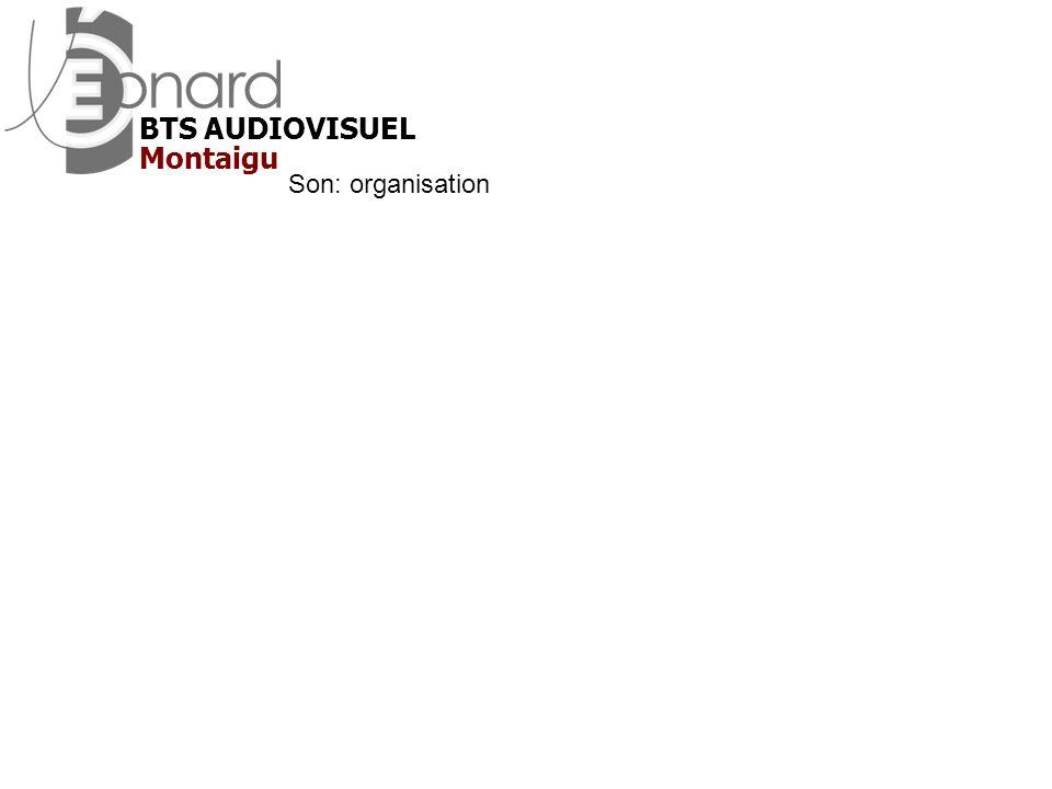 BTS AUDIOVISUEL Montaigu Son: organisation