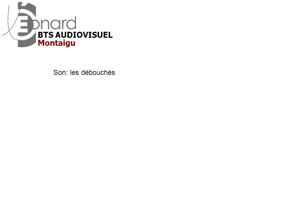 BTS AUDIOVISUEL Montaigu Son: les débouchés