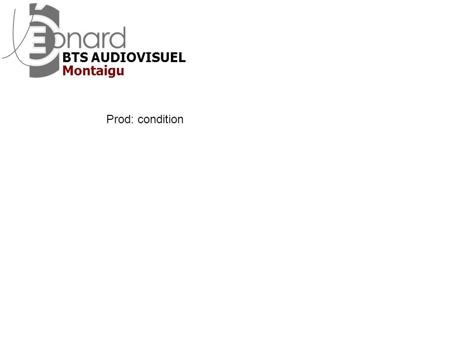 BTS AUDIOVISUEL Montaigu Prod: condition