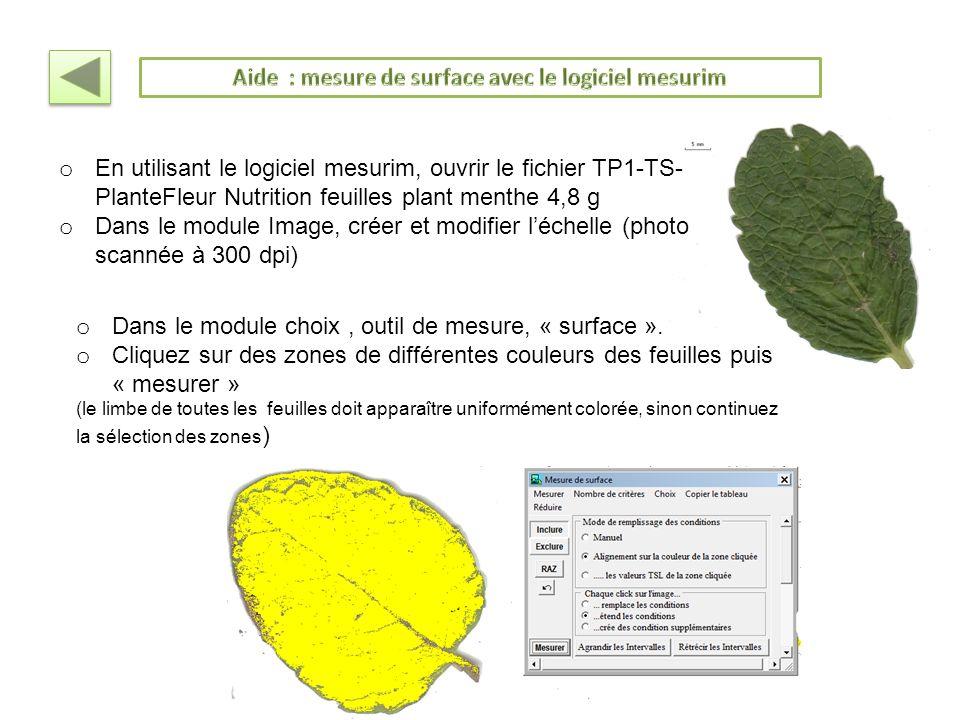 Aide : mesure de surface avec le logiciel mesurim