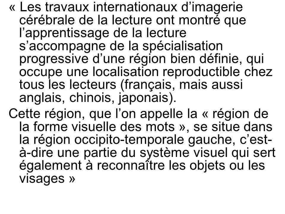 « Les travaux internationaux d'imagerie cérébrale de la lecture ont montré que l'apprentissage de la lecture s'accompagne de la spécialisation progressive d'une région bien définie, qui occupe une localisation reproductible chez tous les lecteurs (français, mais aussi anglais, chinois, japonais).