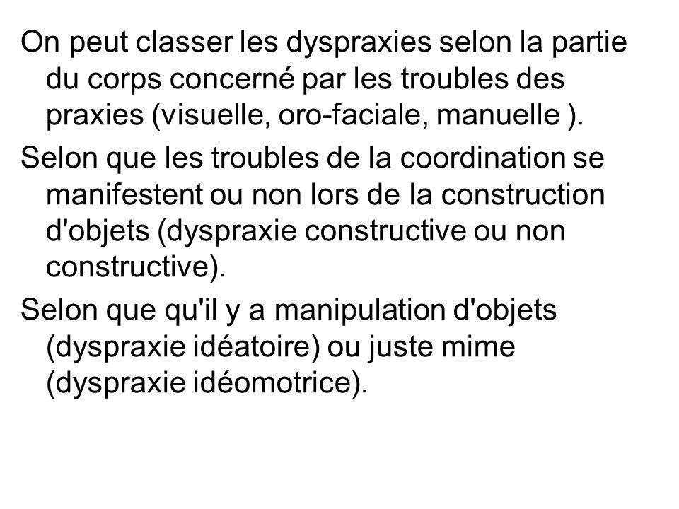 On peut classer les dyspraxies selon la partie du corps concerné par les troubles des praxies (visuelle, oro-faciale, manuelle ).