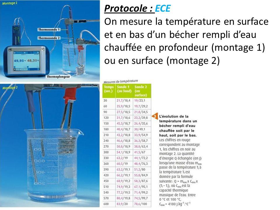 Protocole : ECEOn mesure la température en surface et en bas d'un bécher rempli d'eau chauffée en profondeur (montage 1) ou en surface (montage 2)