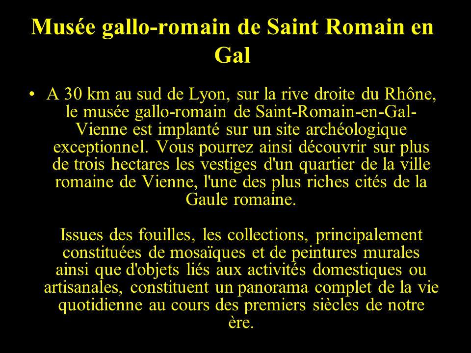 Musée gallo-romain de Saint Romain en Gal