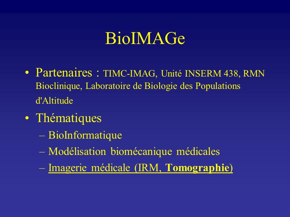 BioIMAGe Partenaires : TIMC-IMAG, Unité INSERM 438, RMN Bioclinique, Laboratoire de Biologie des Populations d Altitude.