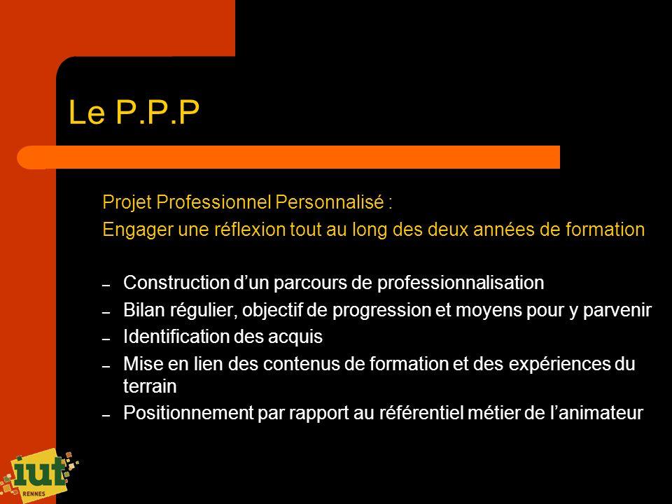 Le P.P.P Projet Professionnel Personnalisé :