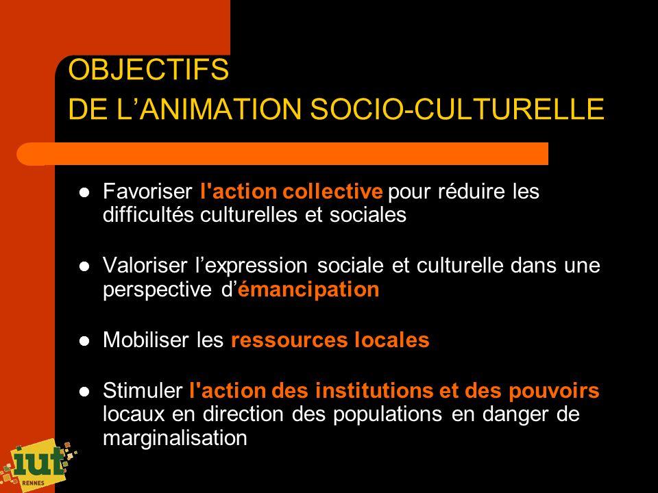 OBJECTIFS DE L'ANIMATION SOCIO-CULTURELLE