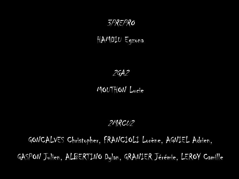 GONCALVES Christopher, FRANCIOLI Lorène, AGNIEL Adrien,