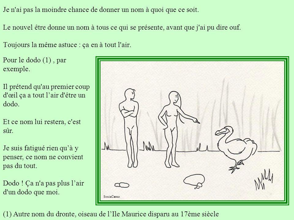 Pour le dodo (1) , par exemple.