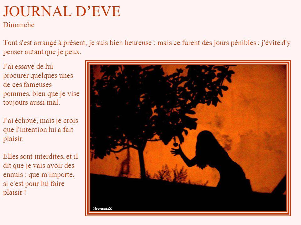JOURNAL D'EVE Dimanche Tout s est arrangé à présent, je suis bien heureuse : mais ce furent des jours pénibles ; j évite d y penser autant que je peux.