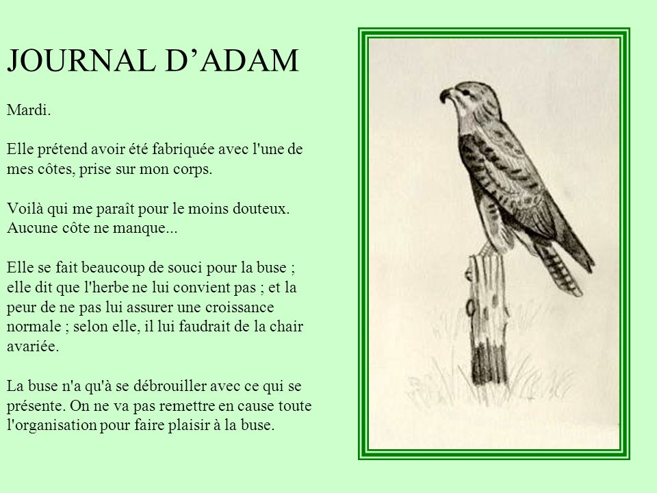 JOURNAL D'ADAM Mardi.