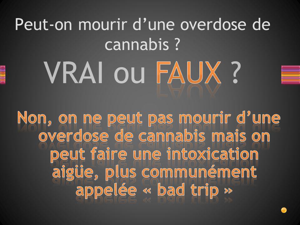 Peut-on mourir d'une overdose de cannabis