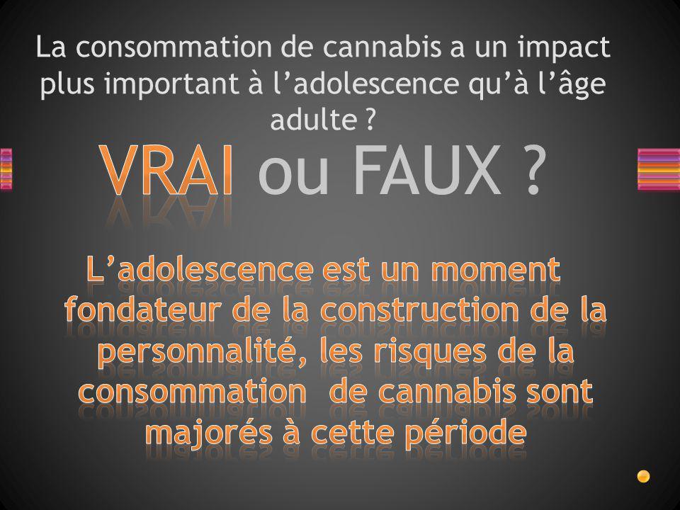 La consommation de cannabis a un impact plus important à l'adolescence qu'à l'âge adulte